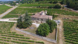 Vignoble - Domaine Etienne Pochon